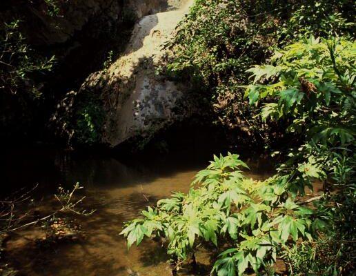 Sara Wan Trailhead Corral Canyon Trail