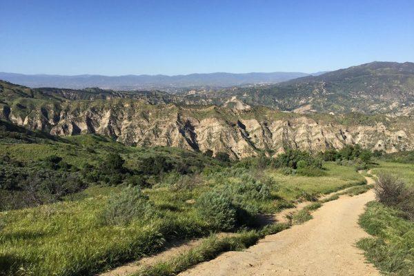 Antonovich OS Trail