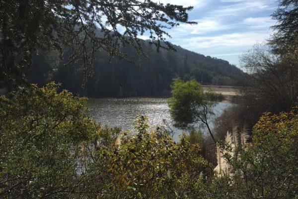 Franklin Lake View