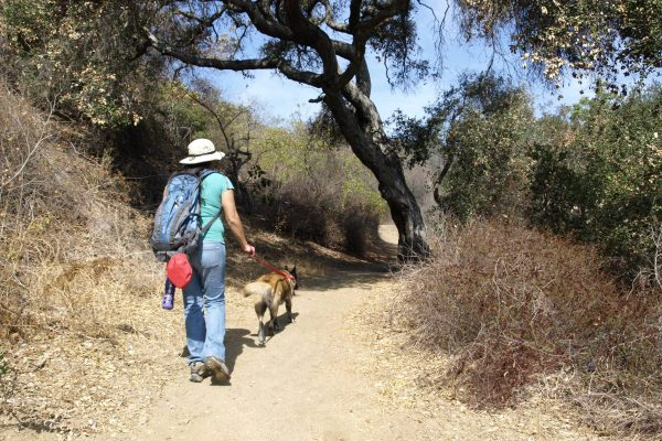 Hastain Trail