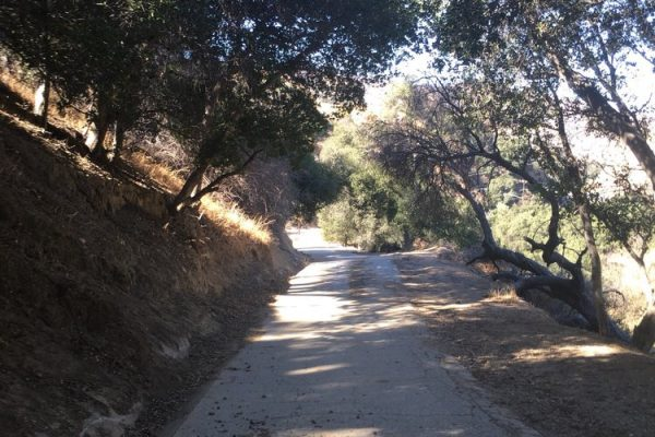 Newhall Pass OS