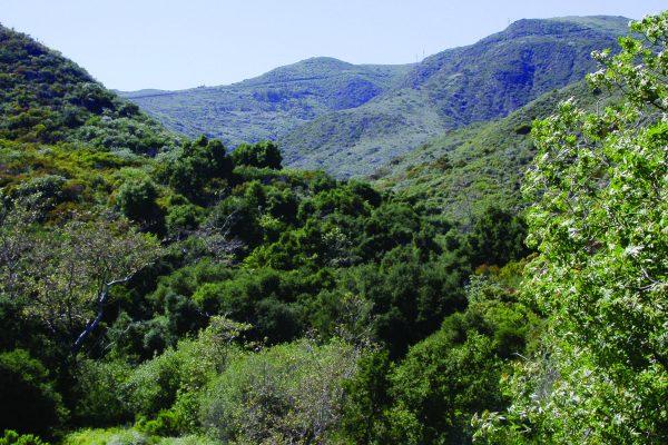 Escondido Trail