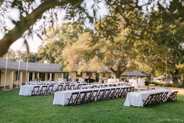 Reception set up in the front gardens. Photo by Aurelia D'Amore Photography
