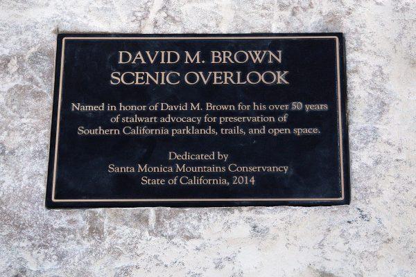 DAVID M. BROWN OVERLOOK