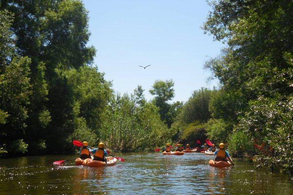Rec zone kayakers sepulveda