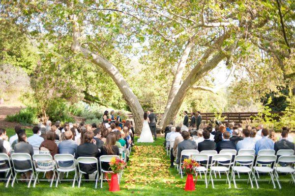 Sycamore V. Wedding 2010 Fence
