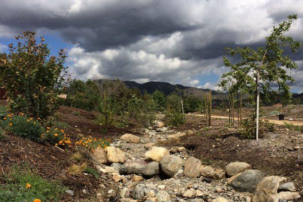 Pacoima Wash Natural Park