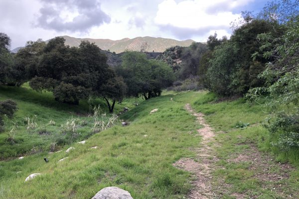 Photograph of project site, Altadena Crest Trail connector